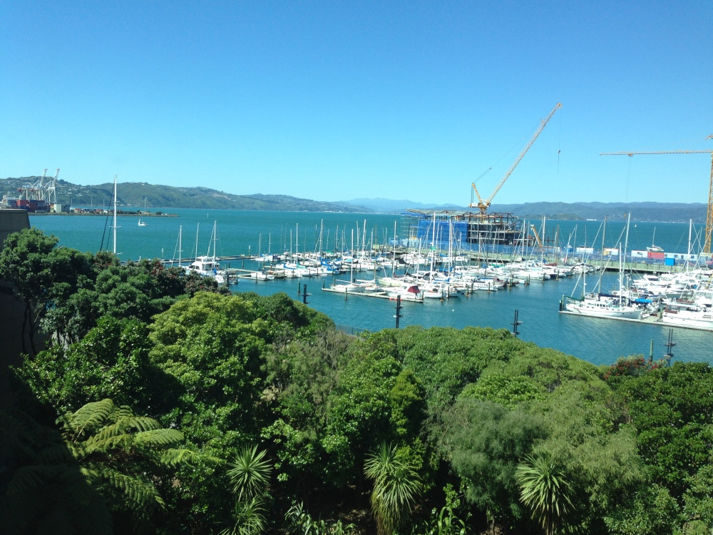Wellington harbour from Te Papa, museum