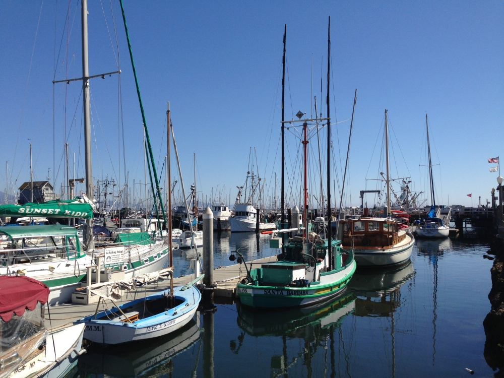 View over marina from Endless Summer Cafe