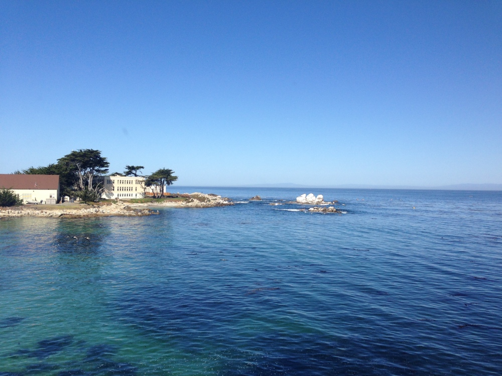 View from Monterey Aquarium