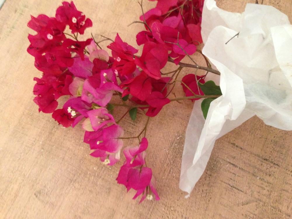 Flowers for Mumma