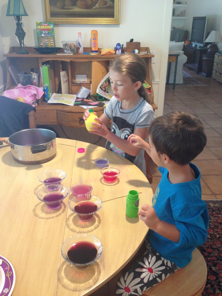 Alkaline and Acid experiment with red cabbage