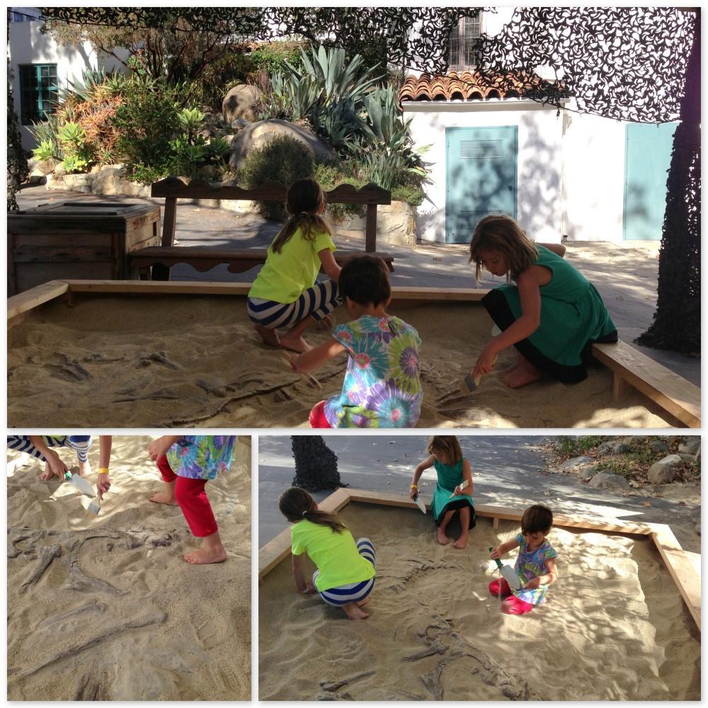Dinosaur excavation at Santa Barbara Museum of Natural History