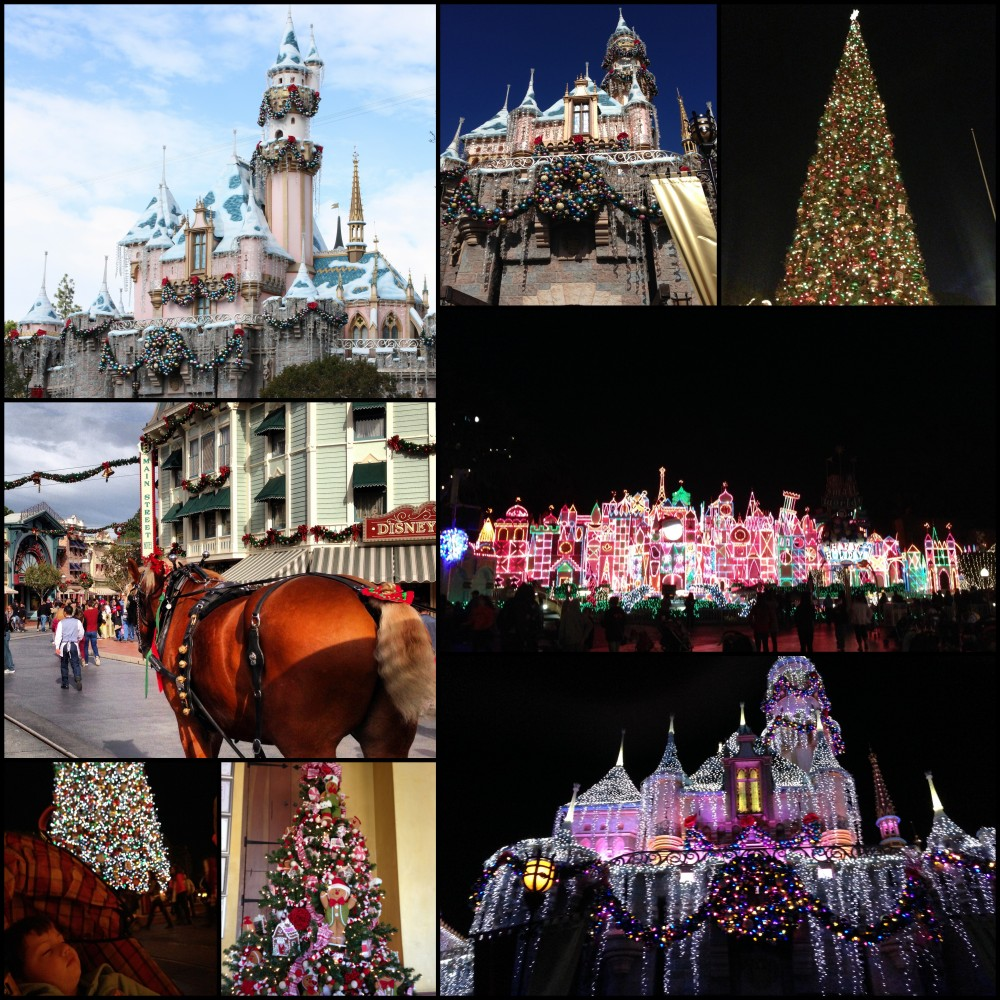 Disneyland Christmas cheer