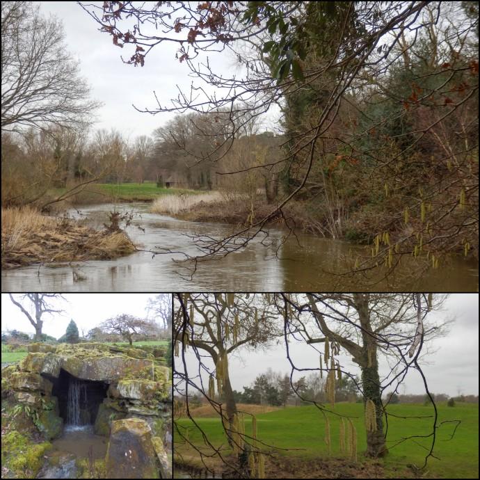 Wisley Gardens, England