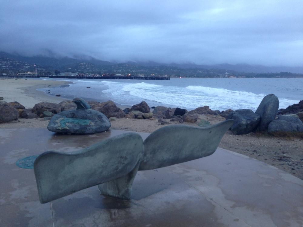 Whale tail Santa Barbara harbour
