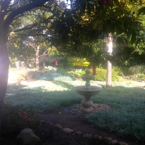Swinging in the garden