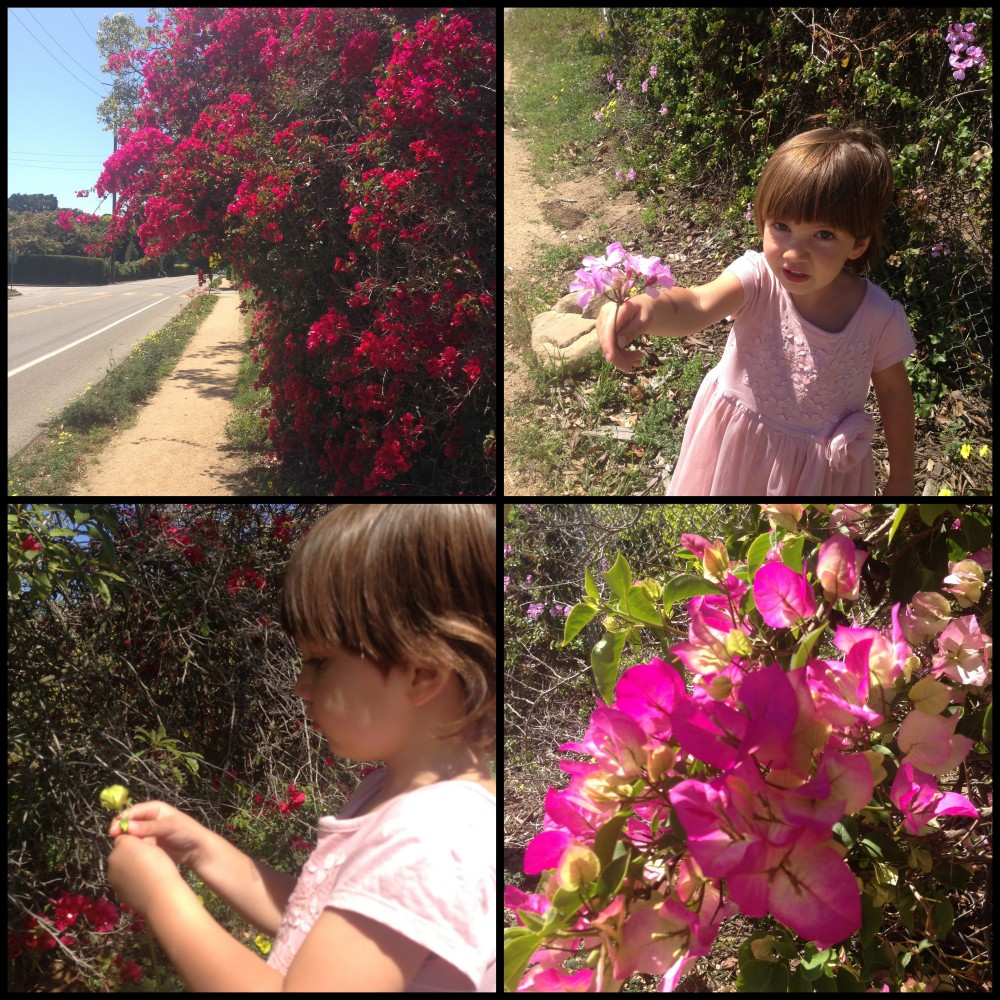 Picking a posy of flowers for Mamma