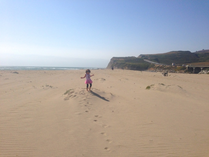 Sandy bay on Pacific Coast Highway, between San Francisco & Monterey