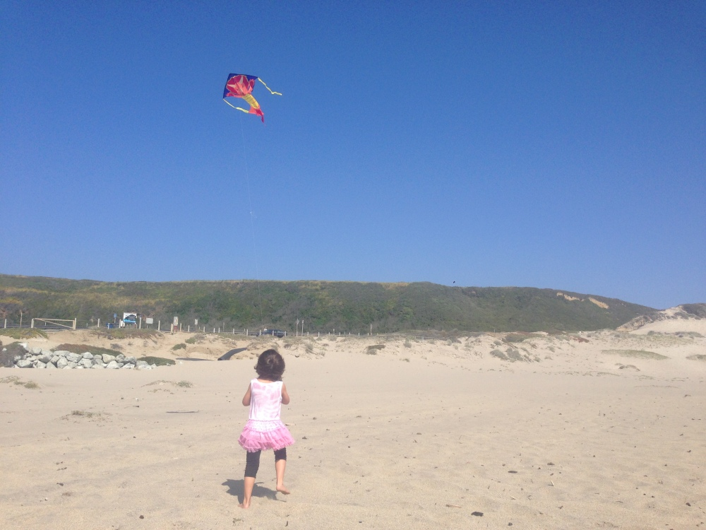 Miss 4 holding on tight to her kite