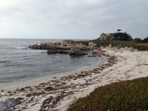 A local beach in Monterey