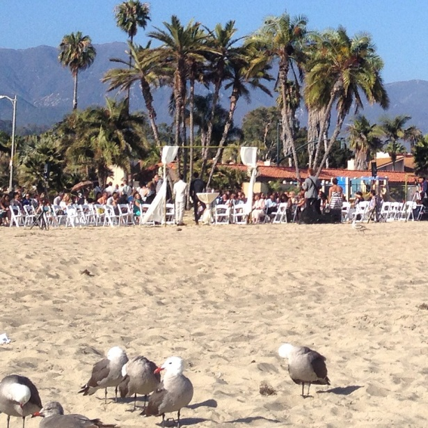 Summer solstice weddings Santa Barbara